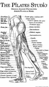 Estudio Pilates Altea - Joseph Pilates 1