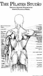 Estudio Pilates Altea - Joseph Pilates 3