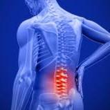 Pilates y Rehabilitación - columna vertebral